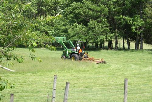 The tractor is a valuable tool on the farm - we use it to haul hay to the field hay feeders and sheds. The pasture in summer sometimes needs to be mowed.